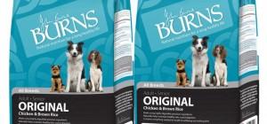 Burns dog