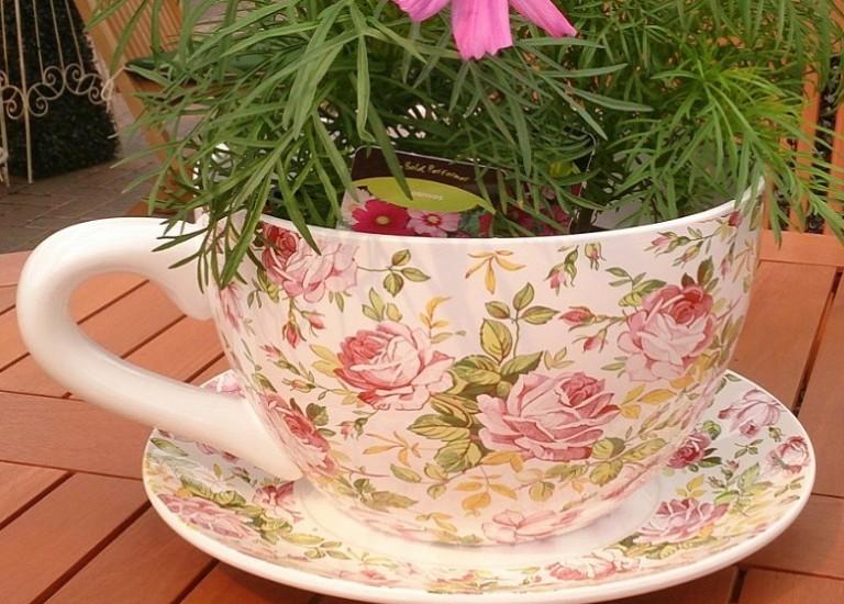 cup & saucer planter