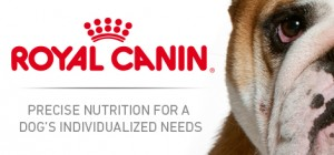 hero-royal-canin-dog