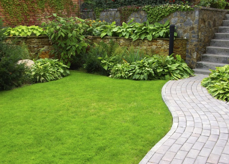 http://www.stjohnsgardencentre.co.uk/wp-content/uploads/2016/03/lawn-care2_768x550_acf_cropped.jpg
