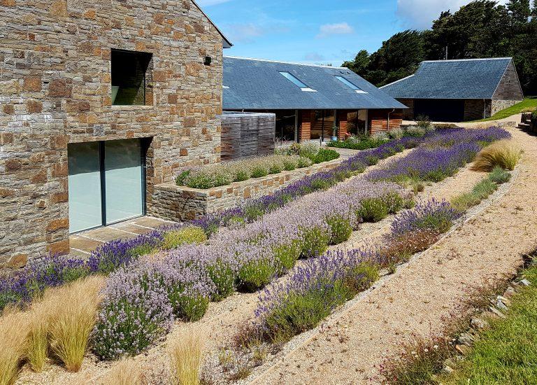 http://www.stjohnsgardencentre.co.uk/wp-content/uploads/2016/09/Landscape-lavender3_768x550_acf_cropped.jpg