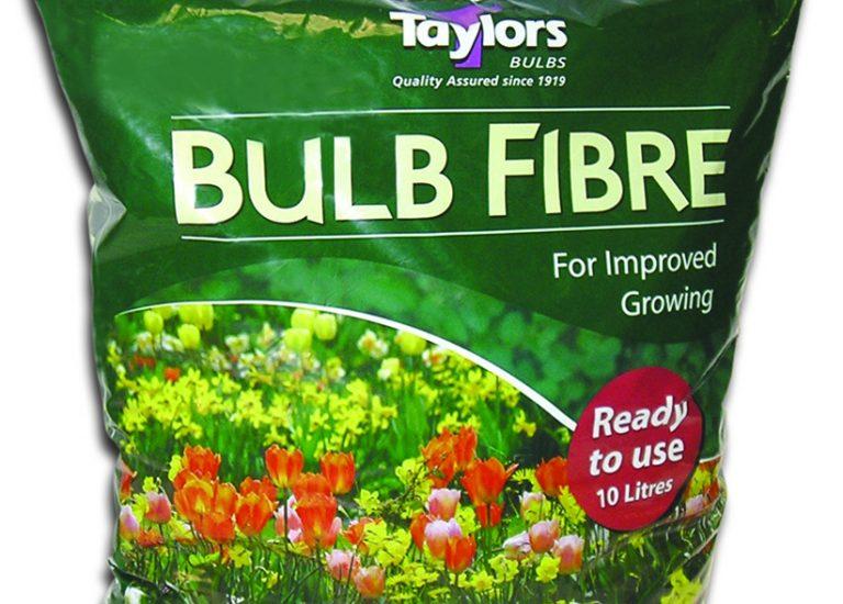 taylors-bulb-fibre